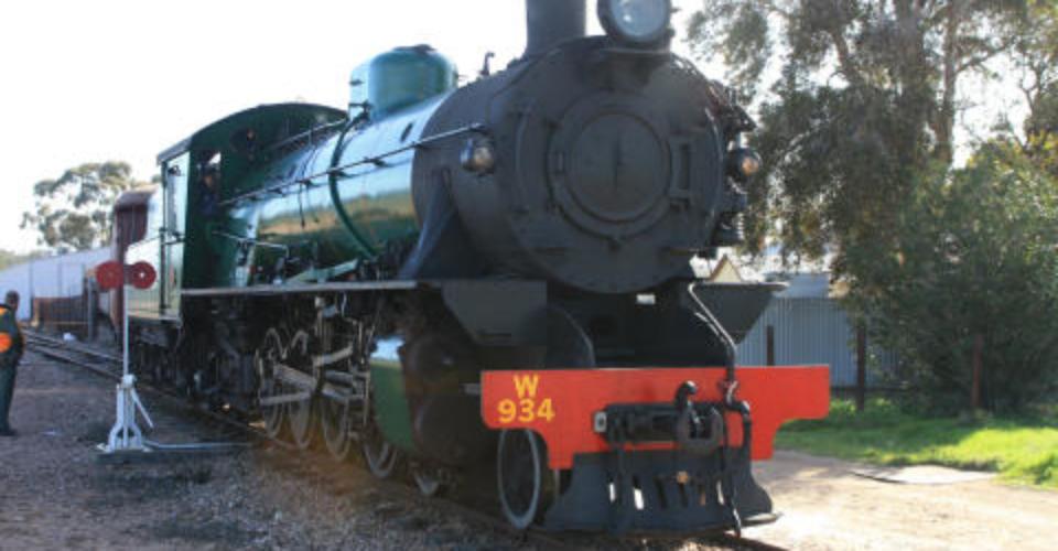 Pitchi Ritchi Railway Trip